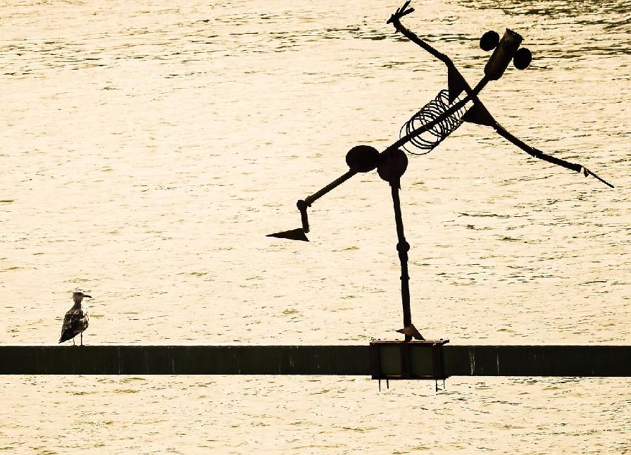 Equilibrio. Imagen extraída de Pixabay http://bit.ly/2kEctcs
